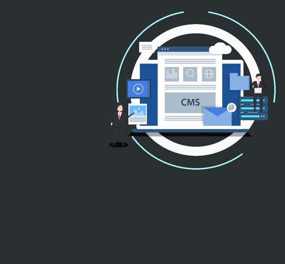 CMS Platform.
